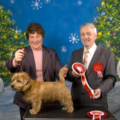 2012 Christmas Open - Best Puppy Dog