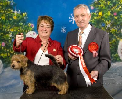 2012 Christmas Open - Best Puppy