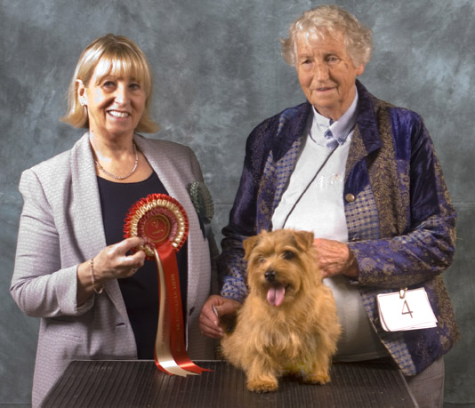 BEST VETERAN:  CH HOBSONS CHOICE AT MOORTOP with Mary Atkinson