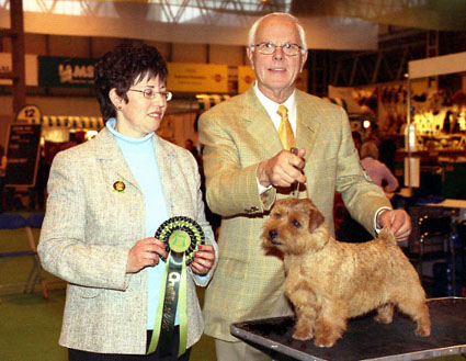 BEST OF BREED, BEST OF GROUP & BEST IN SHOW:  ENG/AM CH CRACKNOR CAUSE CELEBRE