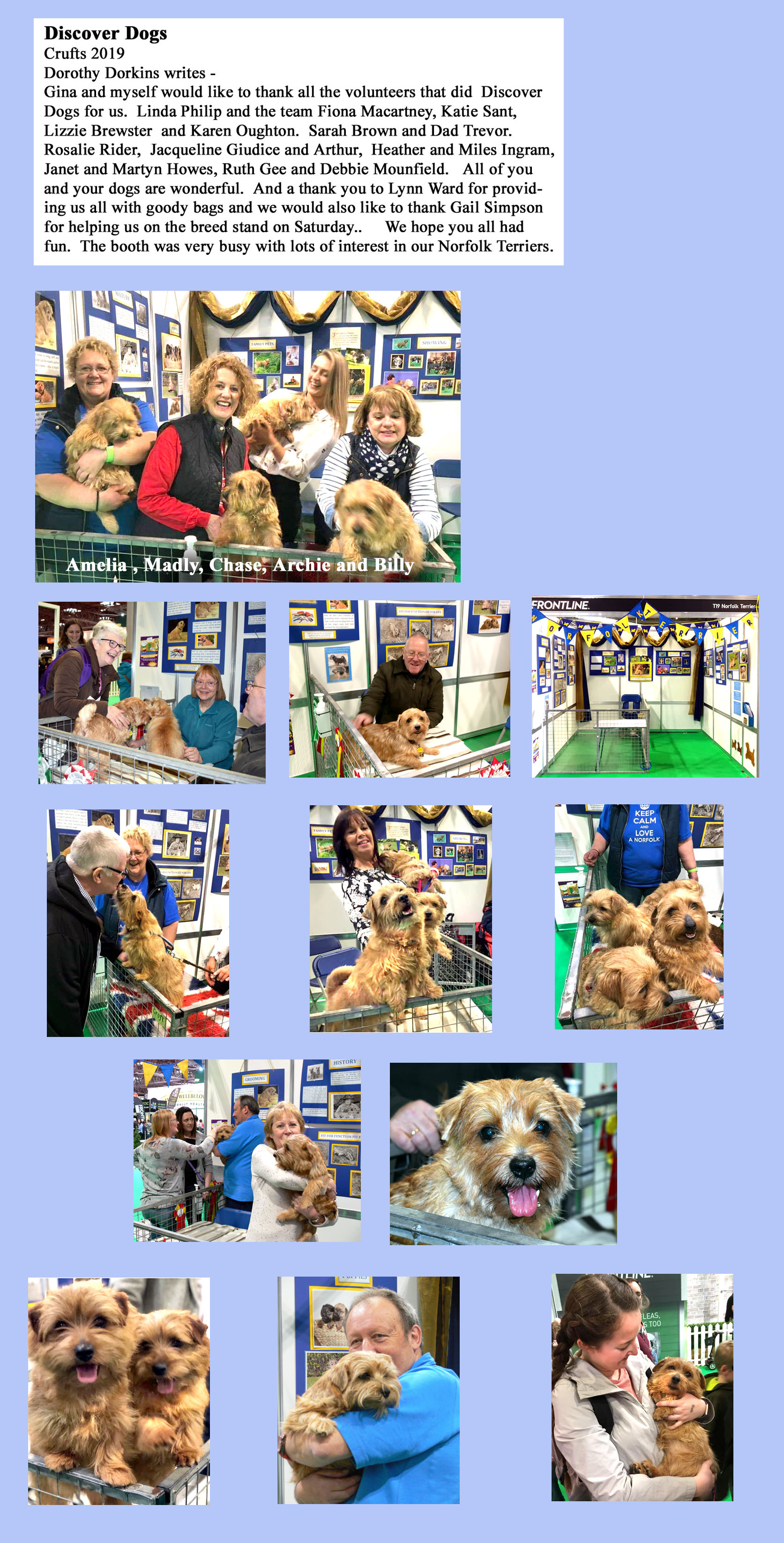 Discover Dogs 2019