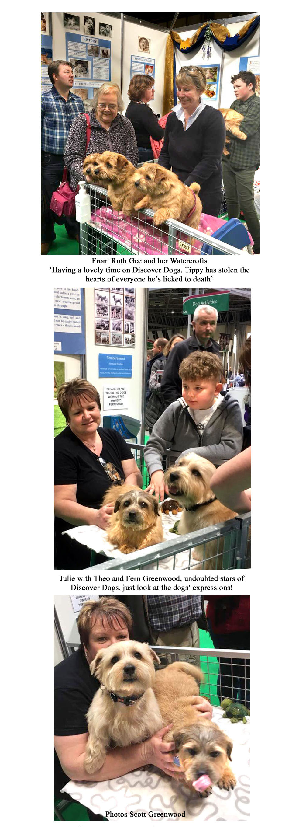Discover Dogs CRUFTS 2018