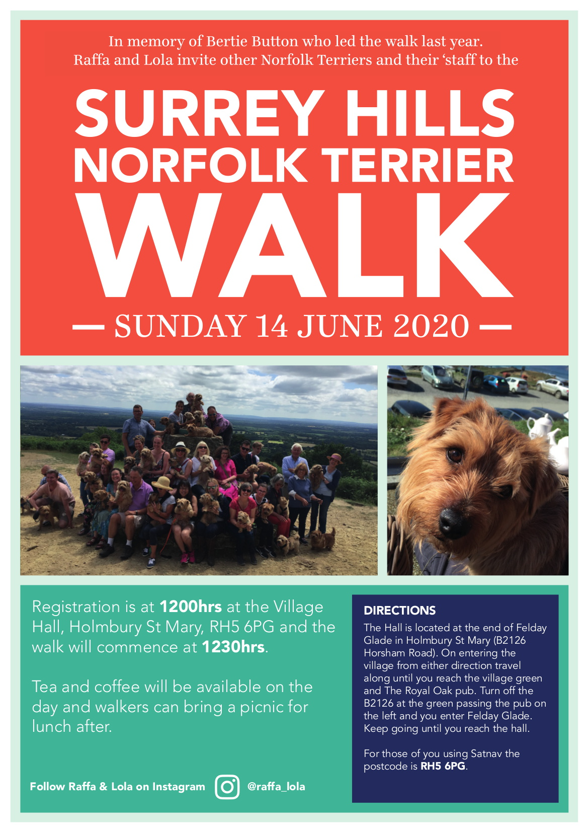 Norfolk Terrier Walk 2020