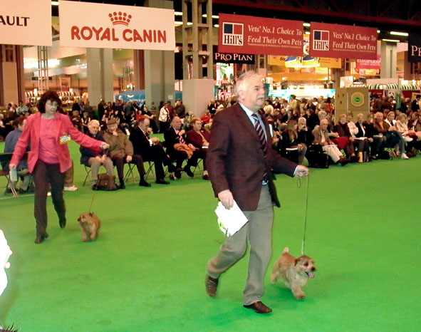 Crufts 2007 Winners