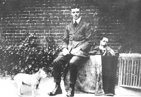 Norfolk Terrier History - Mr Lewis (Podge) Low with the white prick-eared bitch Ninety and one of her puppies. September 1905.