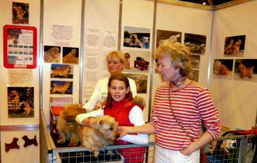 Discover Dogs 2008