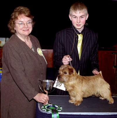 RBB & RESERVE BEST IN SHOW BRYMARDEN CARMEN FOR KREATIN with handler Kristian Hitchen