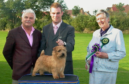 BEST IN SHOW  DOG CC: CH JAEVA GOLD AURIC  with Martin Phillips and Andrew Gullick