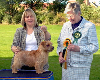 Dog RCC and Best Puppy was 11 month old  RICHELL CONTRABAND  with Rita Mitchell