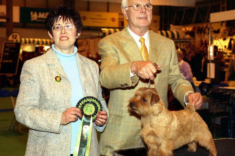 Eng/Am Ch Cracknor Cause Celebre wins Best of Breed.