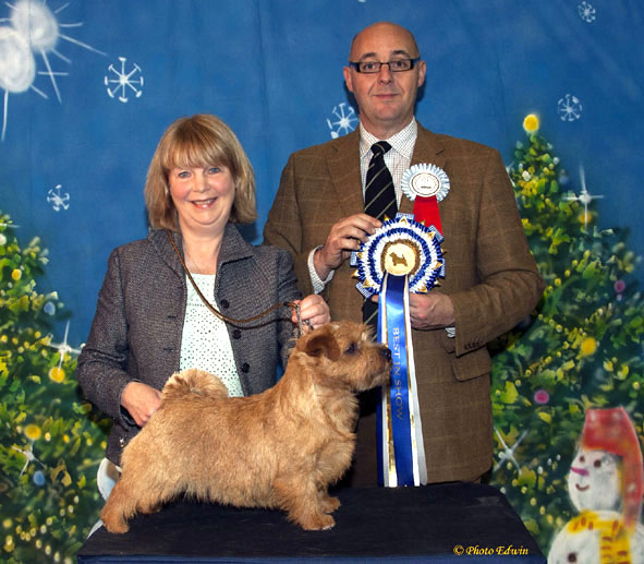 BEST IN SHOW, BB: Kinsridge Top Tip with Diane Jenkins