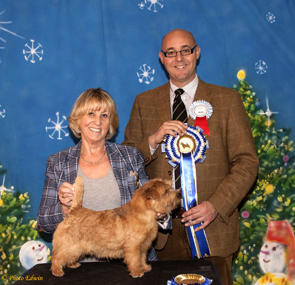 BEST PUPPY IN SHOW: Krisma Nip in the Air with Dot Britten